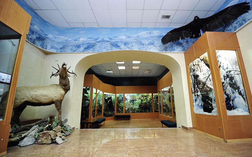 Зал Природы Приморского края